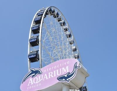 la-gran-rueda-acuario-interactivo-cancun-aquarium