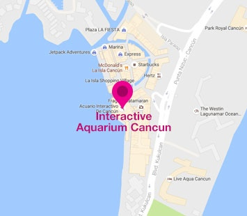 Site Map | Aquarium Cancún