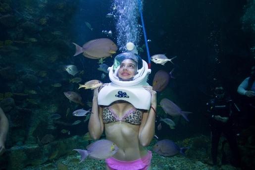 woman under sea in Cancún | Aquarium Cancún