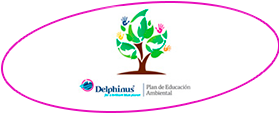 acuario-interactivo-en-cancun-plan-de-educacion-ambiental