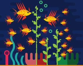 Lionfish cause damage to the environment | Aquarium Cancún